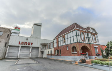 Goaverse Statie - Site Leroy